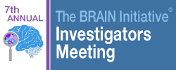 7th Annual Brain Initiative Investigators Meeting logo